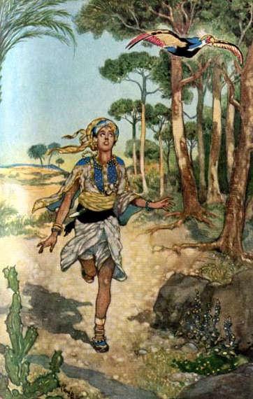 Qamar al-Zaman, illustration by Rene Bull